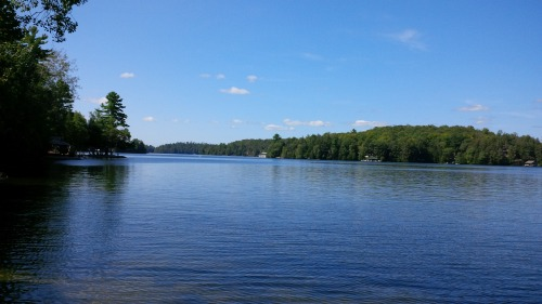 Book - lake and trees