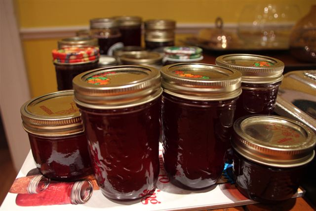 Blog - Red Current Jelly in Jars