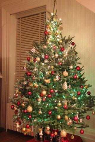 Tiny Perfect Christmas Tree