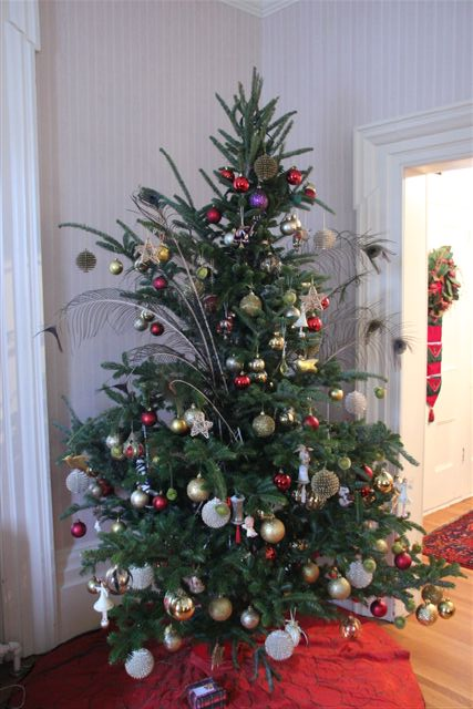 Blog Photo - Christmas Tree 13