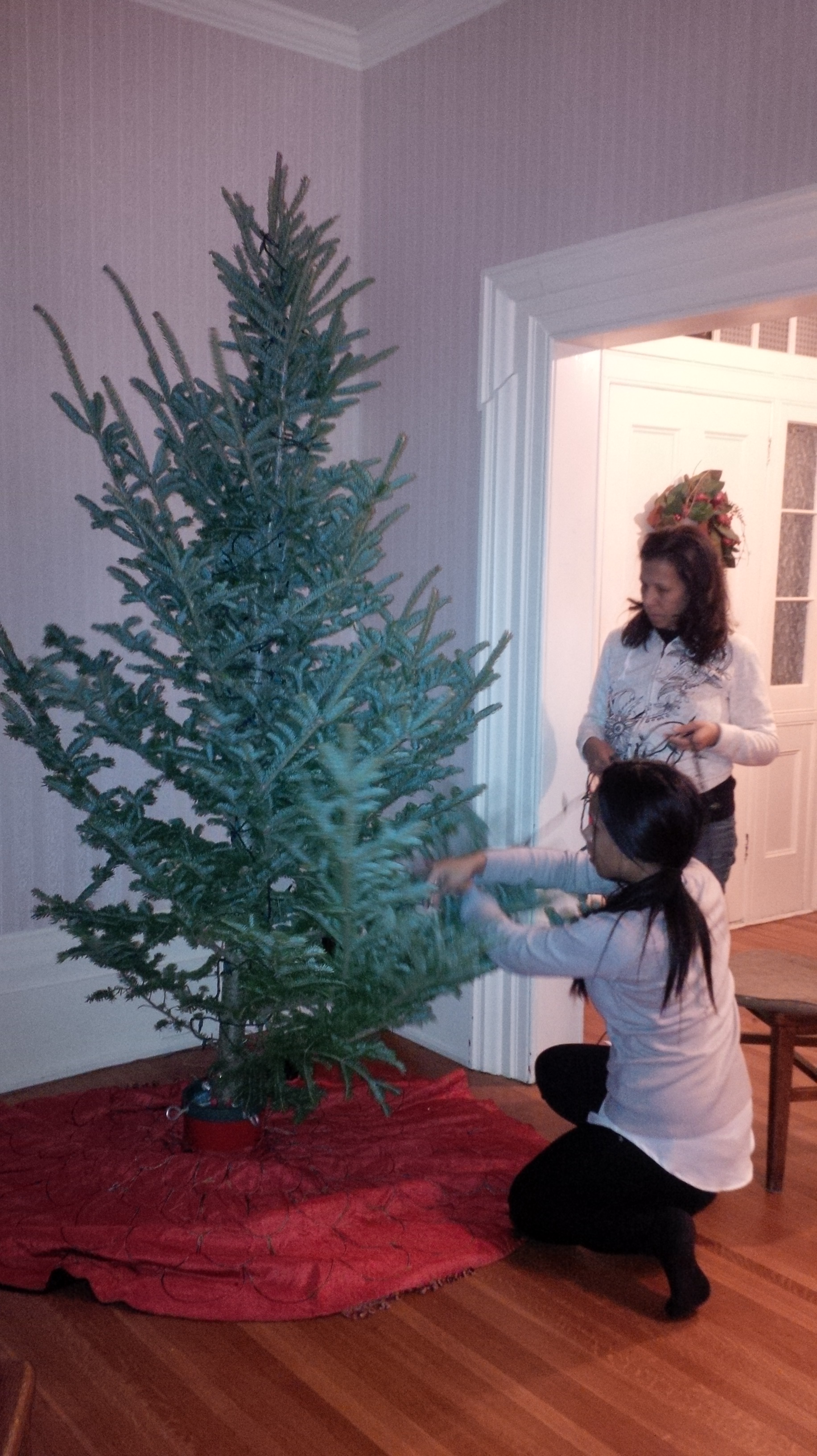 The lopsided Christmas tree | Cynthia Reyes - Author