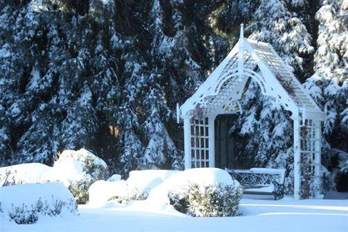 Blog Photo - Arbor in Winter