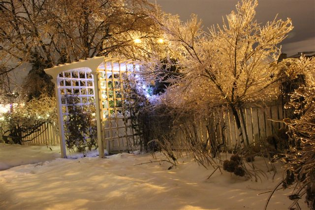 Blog Photo - Icy Winter evening