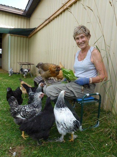 Blog Photo - Val and Chickens
