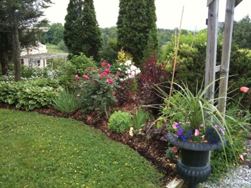Blog Photo - Val flower Bed