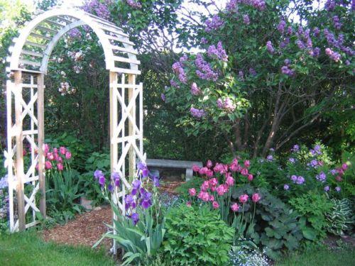 Blog Photo - Mama's Garden1