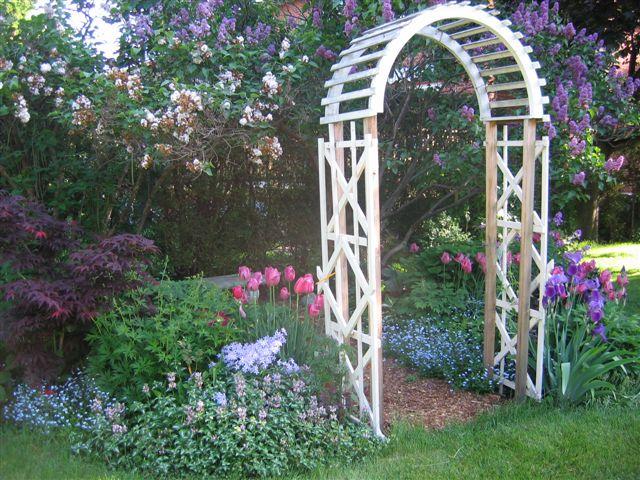 Blog Photo - Mama's Garden2