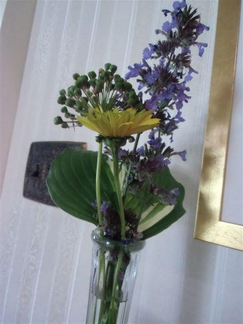 Blog Photo - Hostas in tall vase