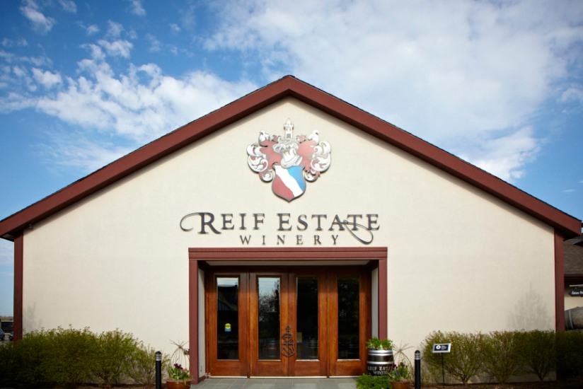 Blog Photo - Klaus' Story Reif Estate Winery