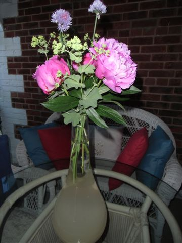 Blog Photo - Peonies in tall vase