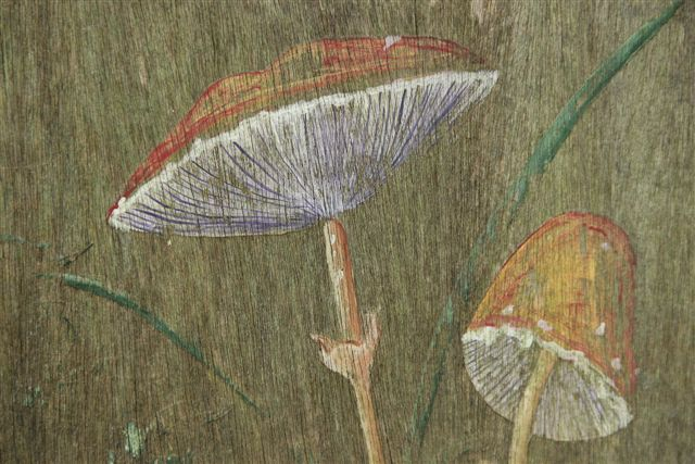 Blog Photo - Rabbit Painting Mushrooms2