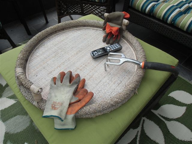 Blog Photo - Gail's garden - implements on tray