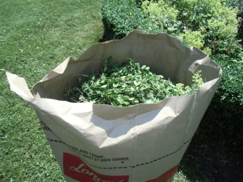 Blog Photo - Garden compost bags