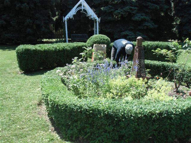 Blog Photo - Garden - working in garden 3