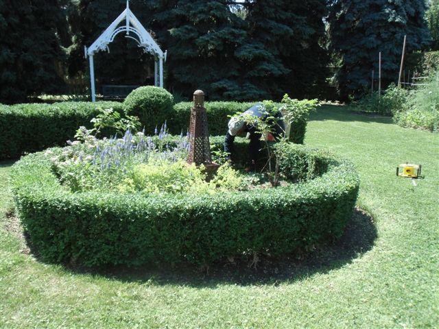 Blog Photo - Garden - Working in Garden1