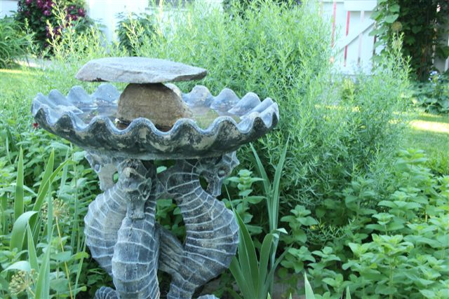 Blog Photo - Herb Bed and Bird Bath