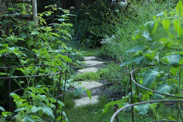 Blog Photo - Veggie Garden Longshot