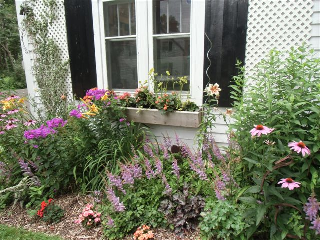 Blog Photo - Artist Sadnra window garden
