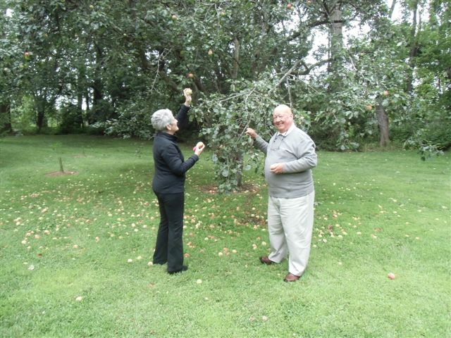 Blog Photo - Artist Sandra and David Picking apples