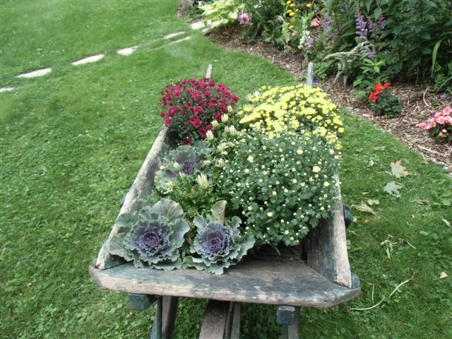 Blog Photo - Artist Sandra Wheelbarrow with flowers