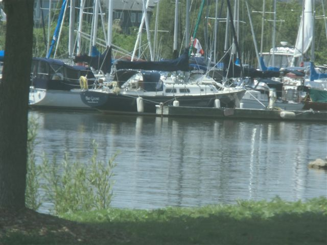 Blog Photo - Bond Head Boats at marina