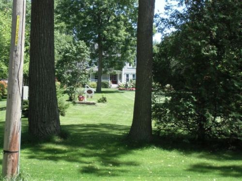 Blog Photo - Bond head grey hosue between trees