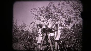 Blog Photo - Bond Head Kids cherry-picking at Newcstle
