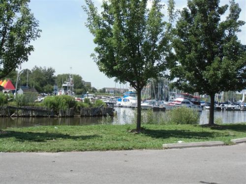 Blog Photo - Bond head marina boats in bg
