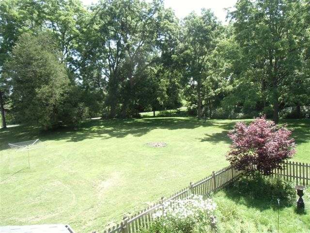 Blog Photo - Ebor House back lawn
