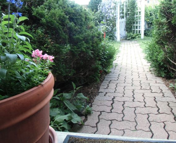 Blog Photo - Verandah Path