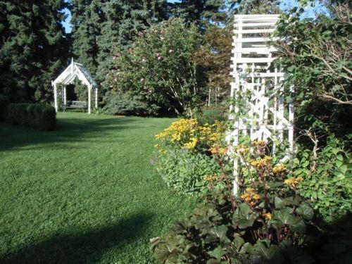Blog Photo - Afternoon Tea Garden