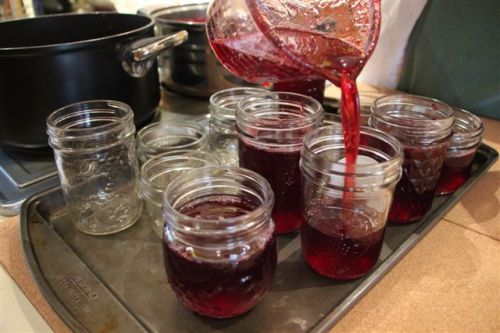 Blog Photo - Jelly pouring into jars
