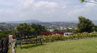 Blog Photo - Mandeville view