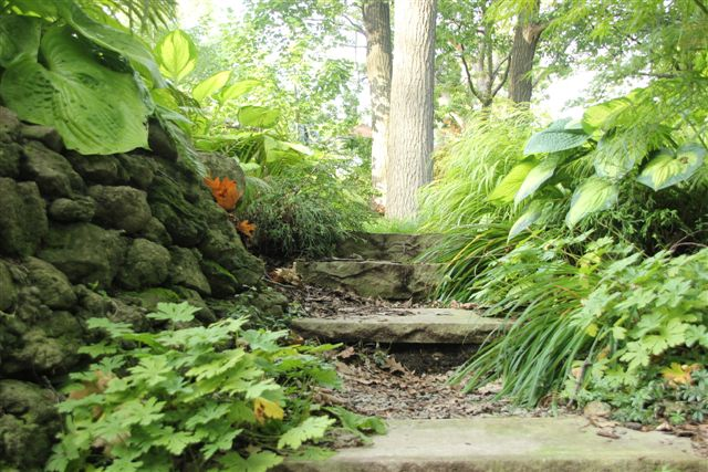 Blog Photo - Mary's Garden Steps and Trees