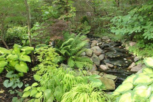Blog Photo - Mary's Garden stream