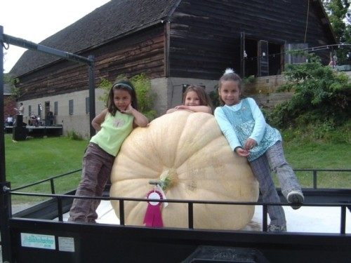 Blog Photo - Pumpkin Giant and Children