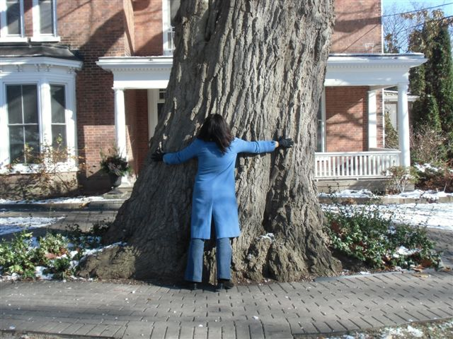 Blog Photo - Trees Woman hugs tree