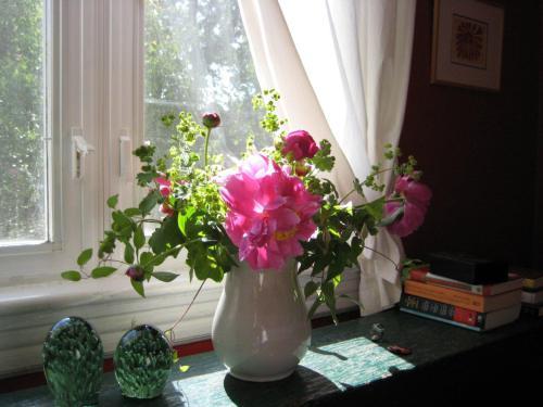 Blog Photo - Bouquet -Jardin