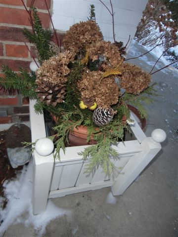 Blog Photo - Planter Box 1