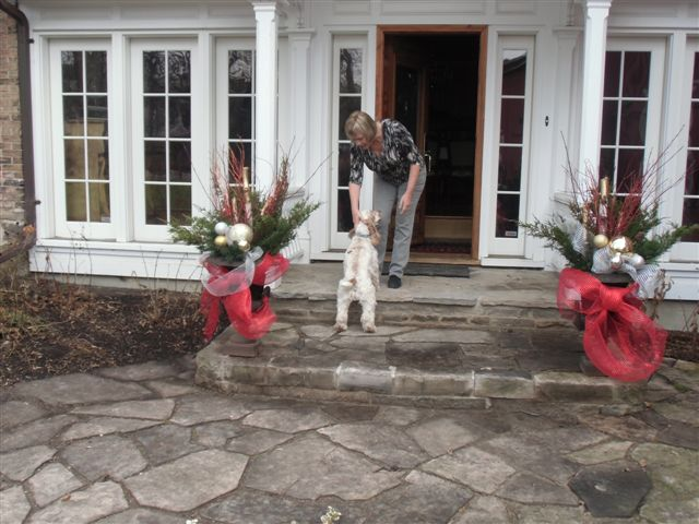 Blog Photo - Stiver House L and Charlie