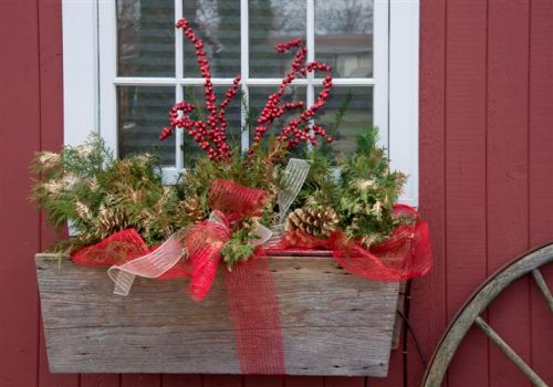 blog photo - stiver house window box