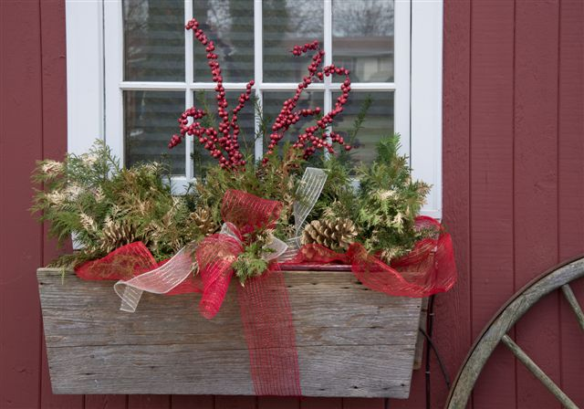 blog photo - stiver house window box