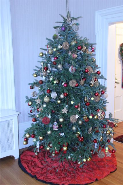 Blog Photo - Christmas Tree