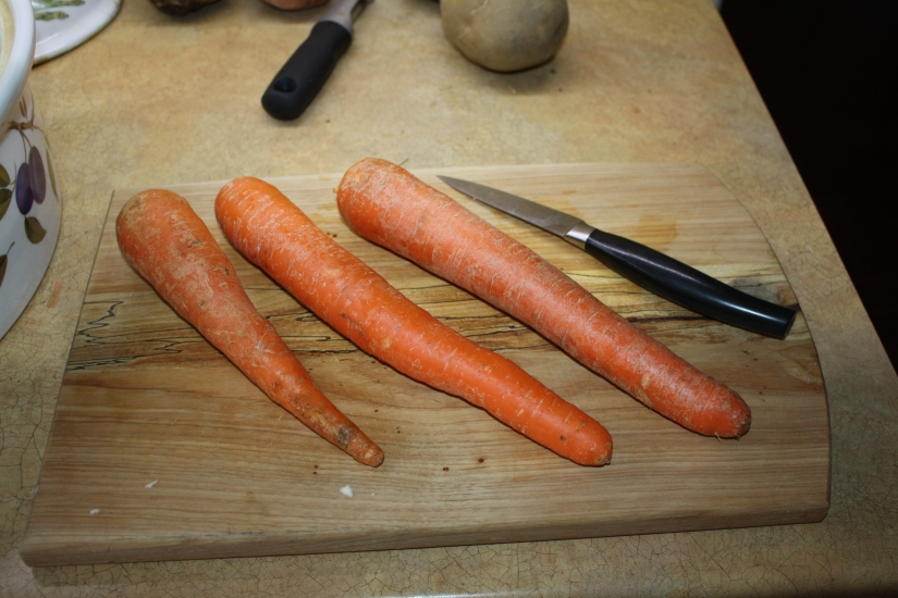 Blog Photo - Recipe - Carrots unpeeled
