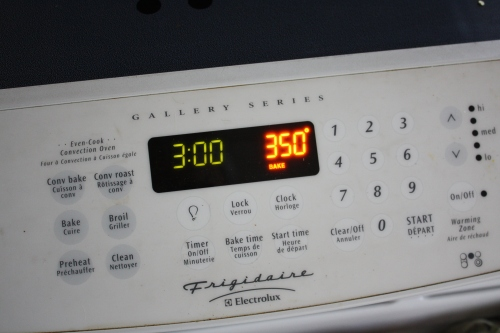 Blog Photo - Recipe - Oven shows temperature