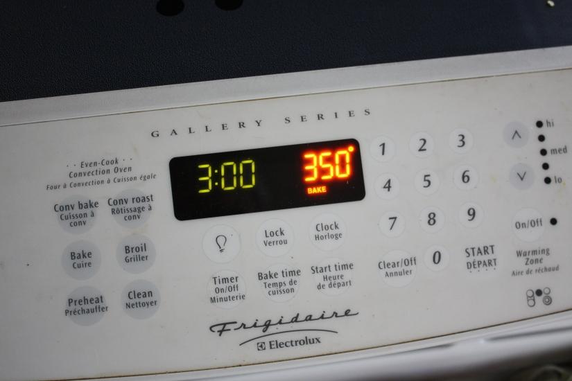Blog Photo - Recipe - Oven shows temperature