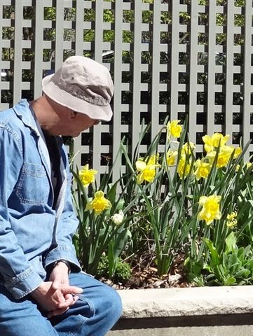 Les and his Daffodils