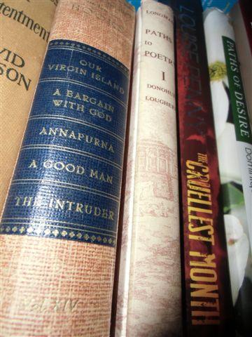 Blog Photo - Books - Bargain with God etc