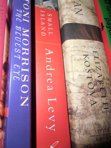 Blog Photo - Books - Morrison and Levy