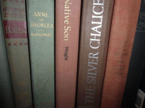 Blog Photo - Books - Native Son and Anne of Avonlea